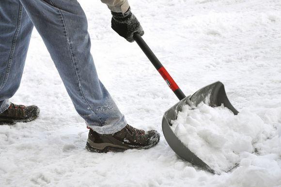 У Київ привезли п'ять фур снігу з Буковелю – бо свого на свята немає (ВІДЕО)