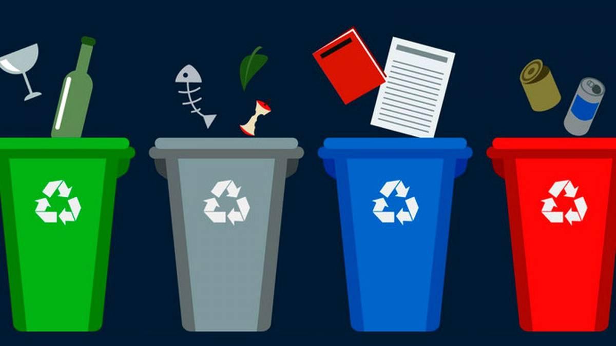 Франківщину запрошують користуватися безкоштовним екододатком по сортуванню сміття