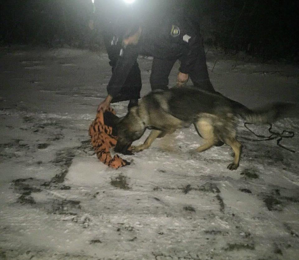 Прикарпатські поліцейські спільно з рятувальниками розшукали столичних туристів, які заблукали в Карпатах (ФОТО)