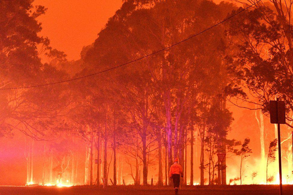 Австралія готується до нової хвилі лісових пожеж