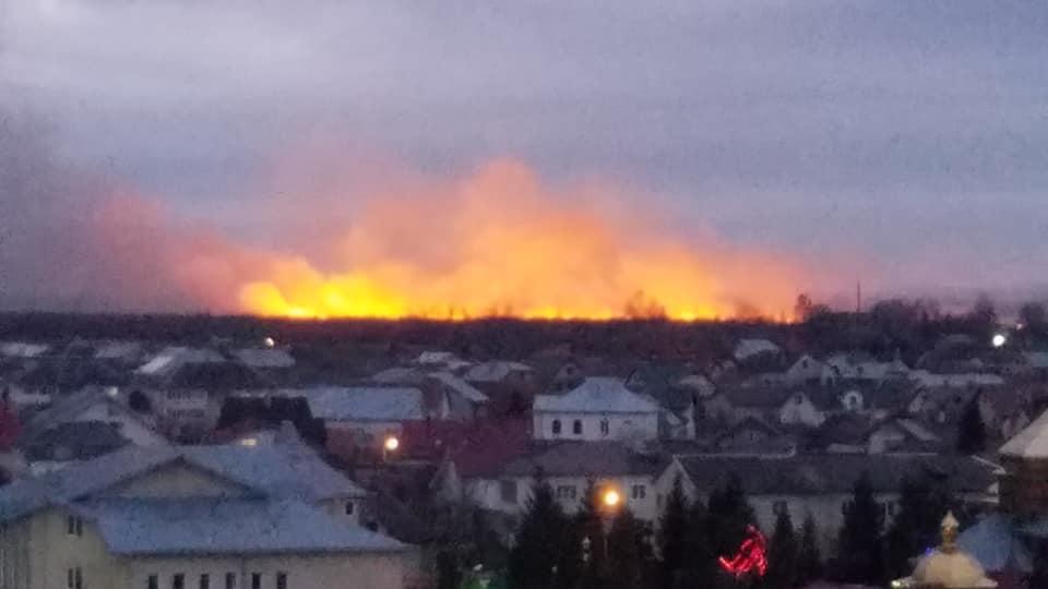 """""""Підпалювали і щезали"""". Масштабна пожежа на околицях міста виникла через підпал невідомими (ВІДЕО)"""