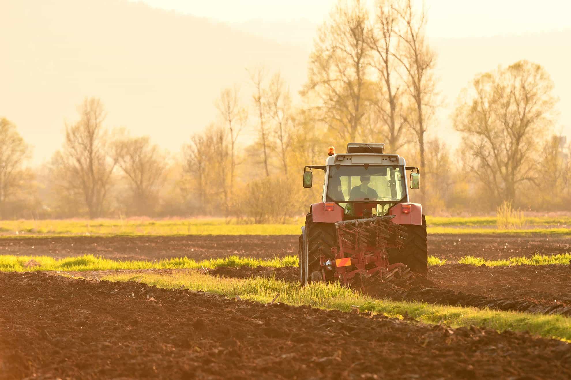 Німецькі фермери, котрі працюють на Прикарпатті, просять владу не обмежувати їх у купівлі землі