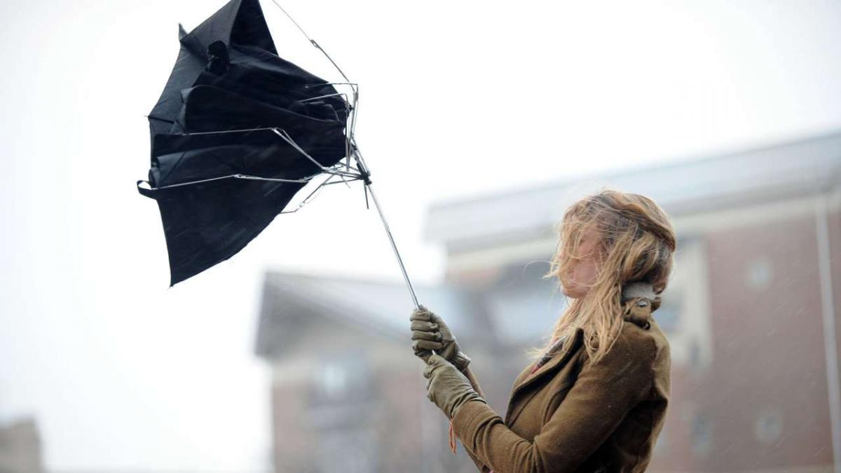 Сильний вітер і туман: На Прикарпатті оголосили штормове попередження