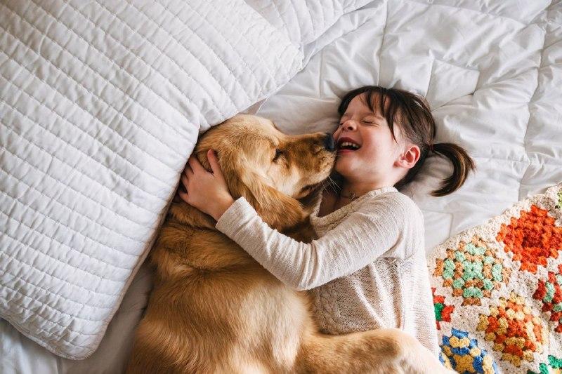 """В іспанських школах планують викладати """"Повагу до тварин"""""""