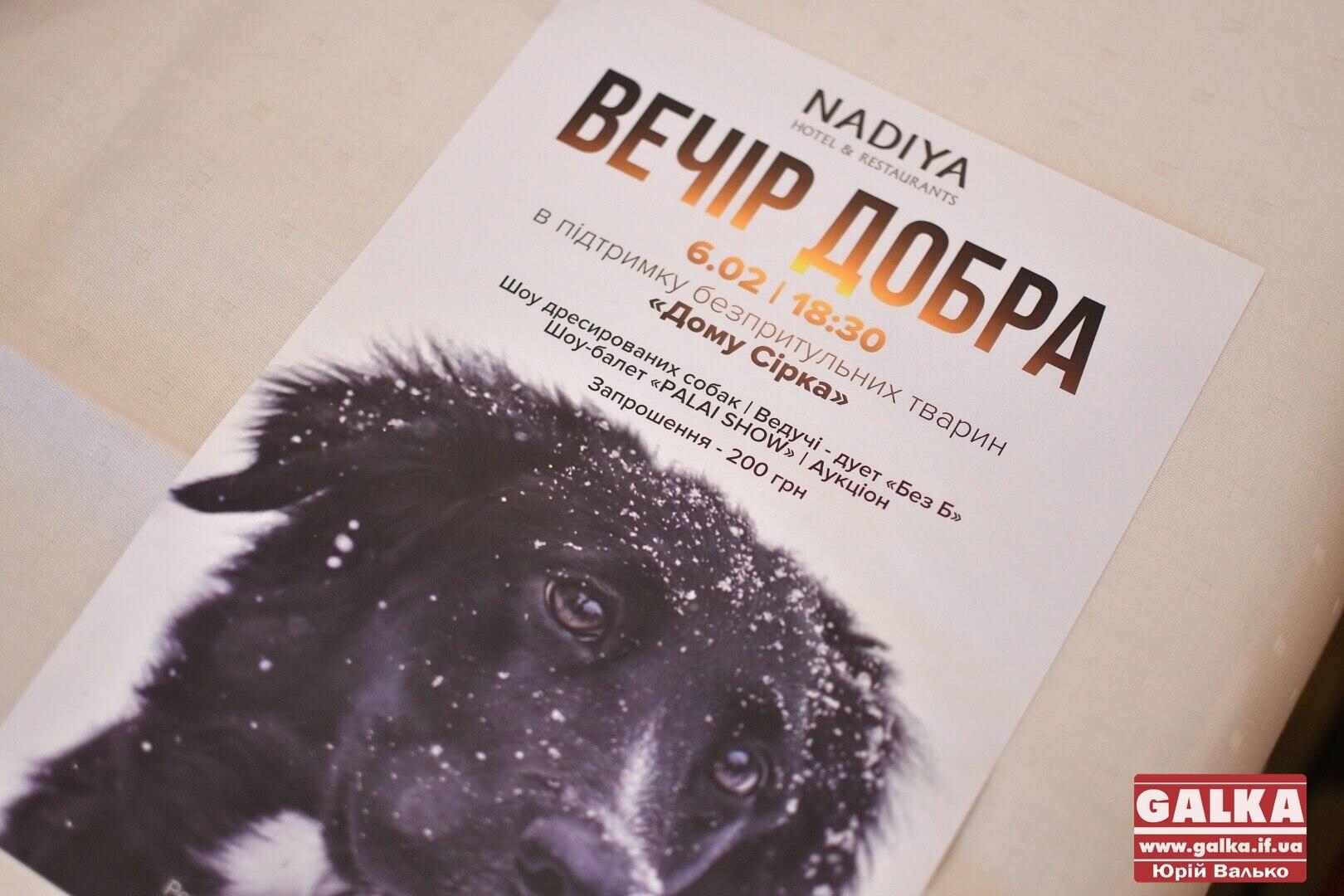 Для порятунку безпритульних собак у Франківську проведуть благодійний вечір (ФОТО)