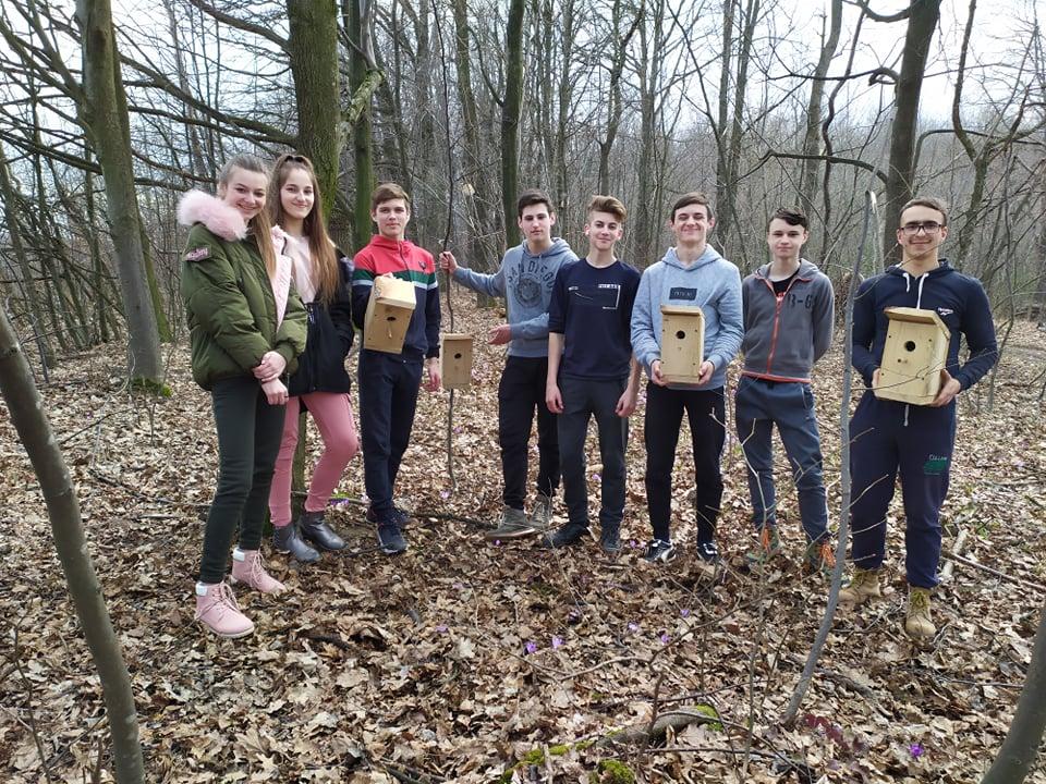 На Прикарпатті школярі висадили 200 дерев і встановили 35 шпаківень (ФОТО)