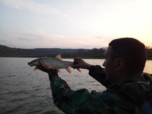 Врятовані червонокнижні рибини та десятки метрів сіток: що напатрулювали за добу прикарпатські рибоохоронці (ФОТО, ВІДЕО)