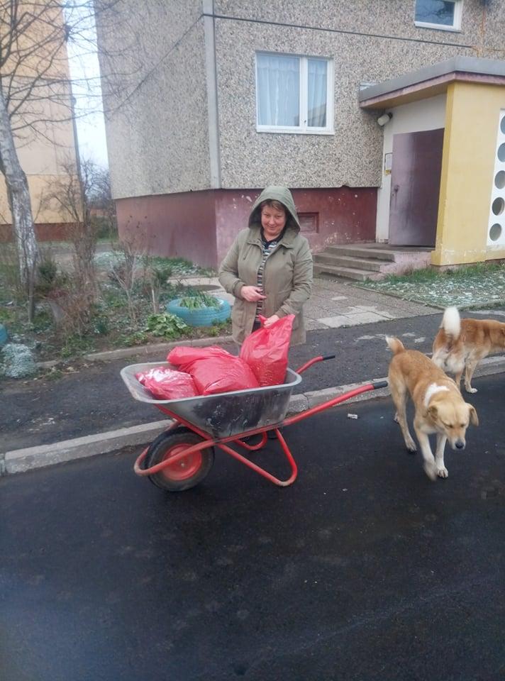 """Волонтери """"Дому Сірка"""" годують безпритульних собак на вулицях – просять допомогти грошима (ФОТО)"""
