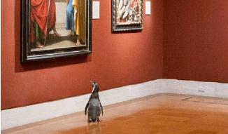 У США пінгвінів із зоопарку зводили у музей мистецтв (ФОТО)
