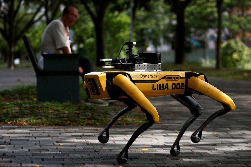 У Сінгапурі натовпи людей у парках розганяє робот-пес (ФОТО)