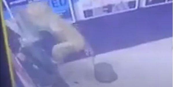В Індії зламали банкомат і втекли. Виявилося, що це зробила мавпа (ВІДЕО)