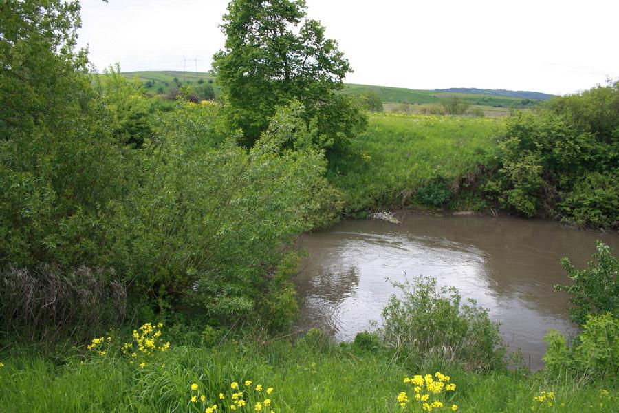 У Бурштині проведуть розчистку русла річки Гнила Липа