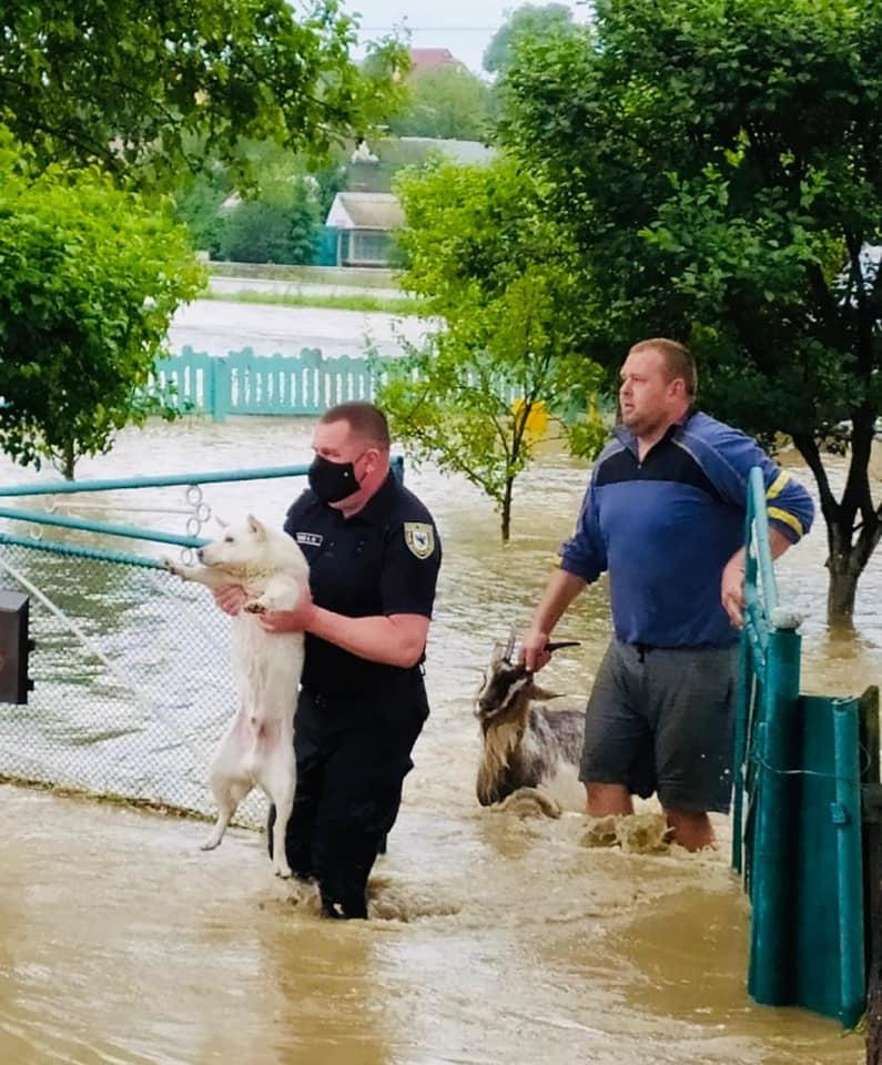 Дорога на Коломию заблокована: у Лісному Хлібичині затопило автошлях і житлові будинки, триває евакуація (ФОТО, ВІДЕО)