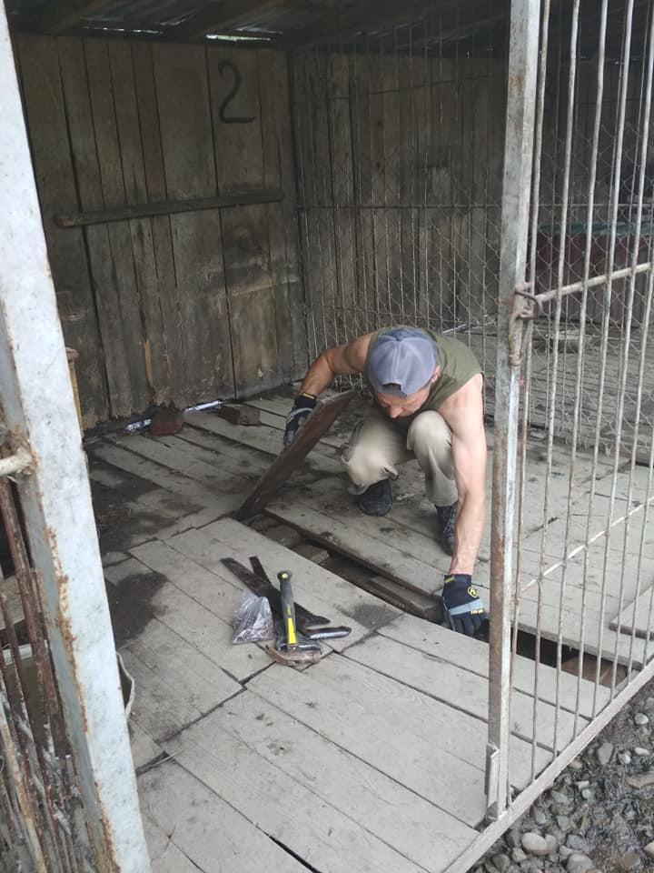 Небайдужі відновили затоплений притулок для тварин у Калуші (ФОТО, ВІДЕО)