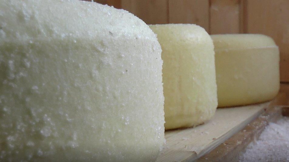 На Прикарпатті подружжя виготовляє сім видів овечого сиру та масло (ВІДЕО)