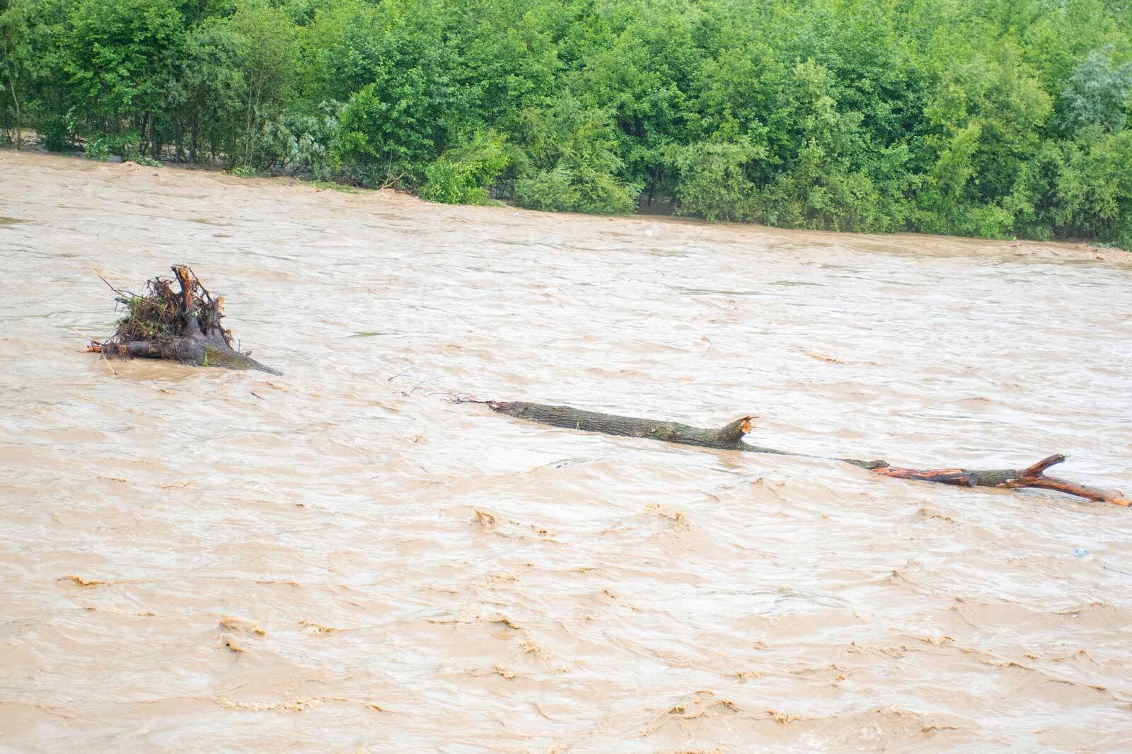 У найближчі дні через дощі річки в області суттєво піднімуться – ДСНС