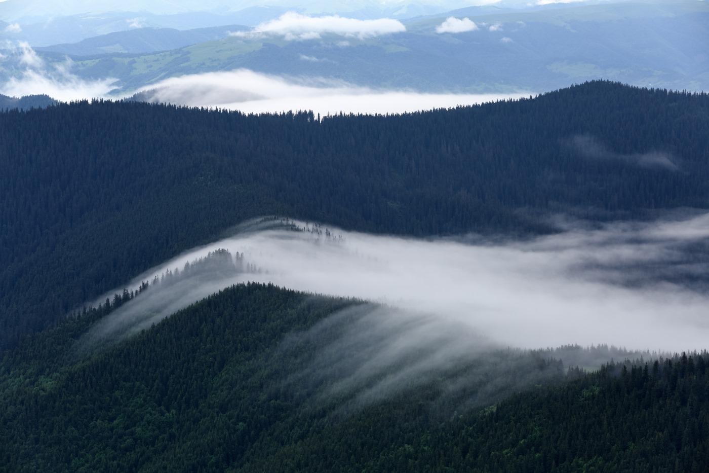 Магічні світлини Мармароських гір у хмарах показали в мережі (ФОТО)