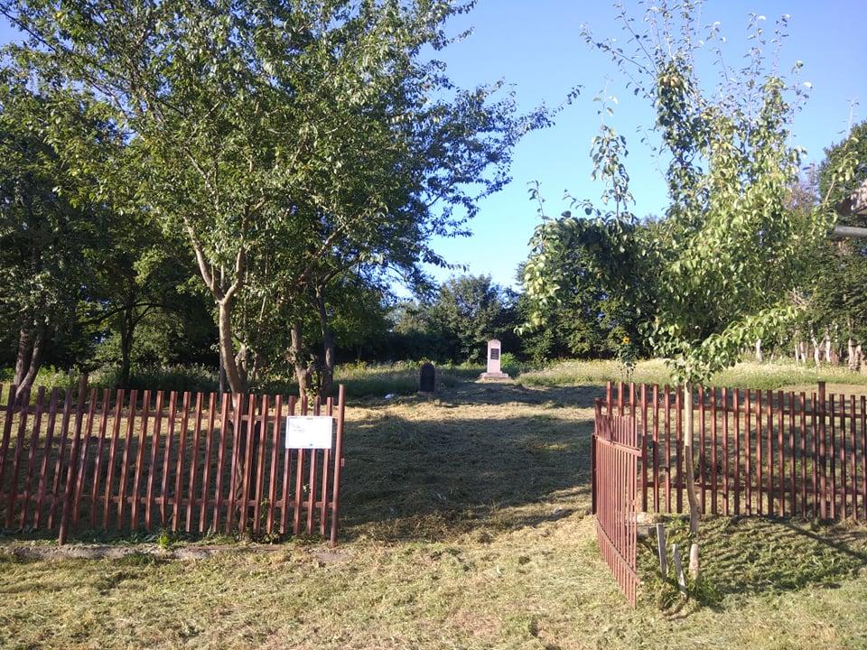 На єврейському кладовищі в Рогатині взялися наводити лад (ФОТО)