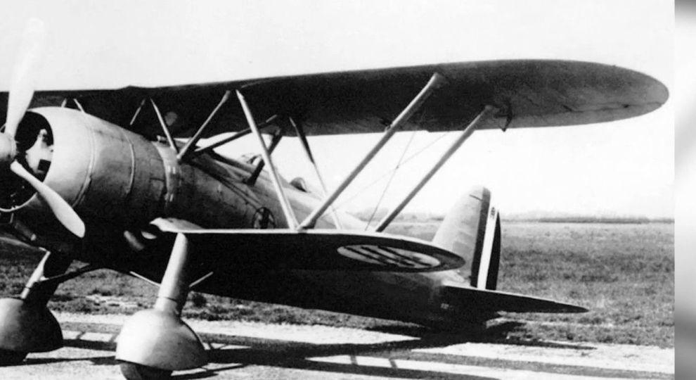 У Карпатах віднайшли збитий італійський винищувач часів Другої світової (ВІДЕО)