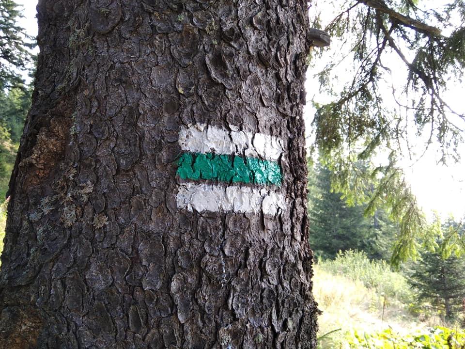 На черговому гірському маршруті на Франківщині відновили маркування (ФОТО)