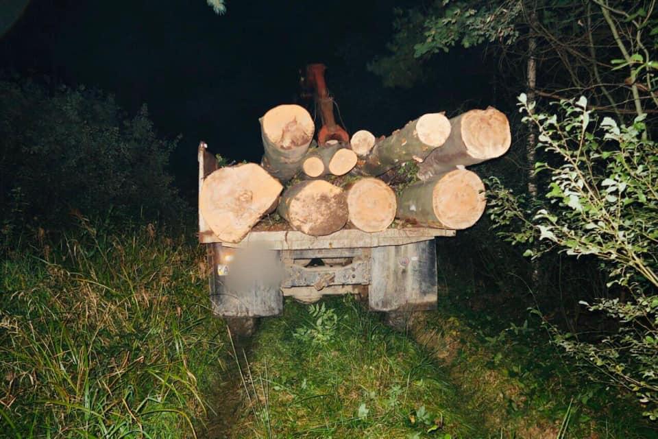 На Калущині спіймали лісника на машині, повній необлікованої деревини (ФОТО)