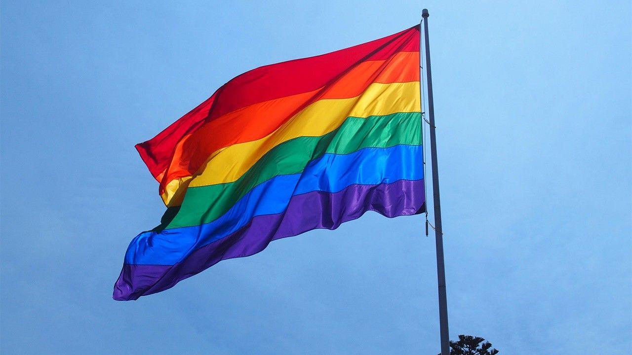 Поліція перевірить, чи може бути гей патріотом