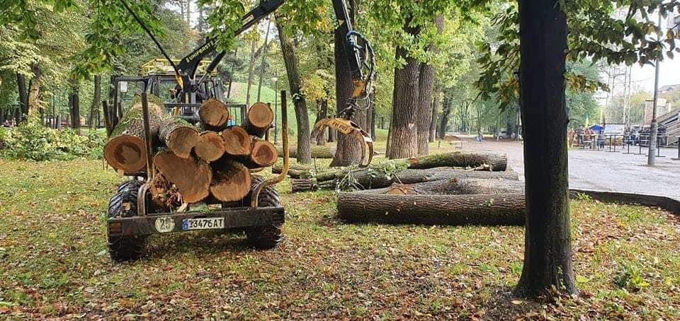 Повалені негодою дерева з міського парку використають для благоустрою території (ФОТО)