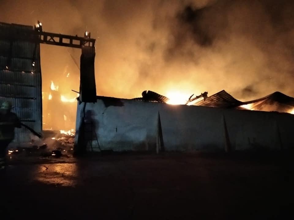 Масштабна пожежа у Коломийському районі: згоріли понад 300 тонн соняшника та сої (ФОТО, ВІДЕО)