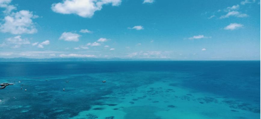 В Австралії виявили відокремлений кораловий риф висотою 500 метрів (ВІДЕО)