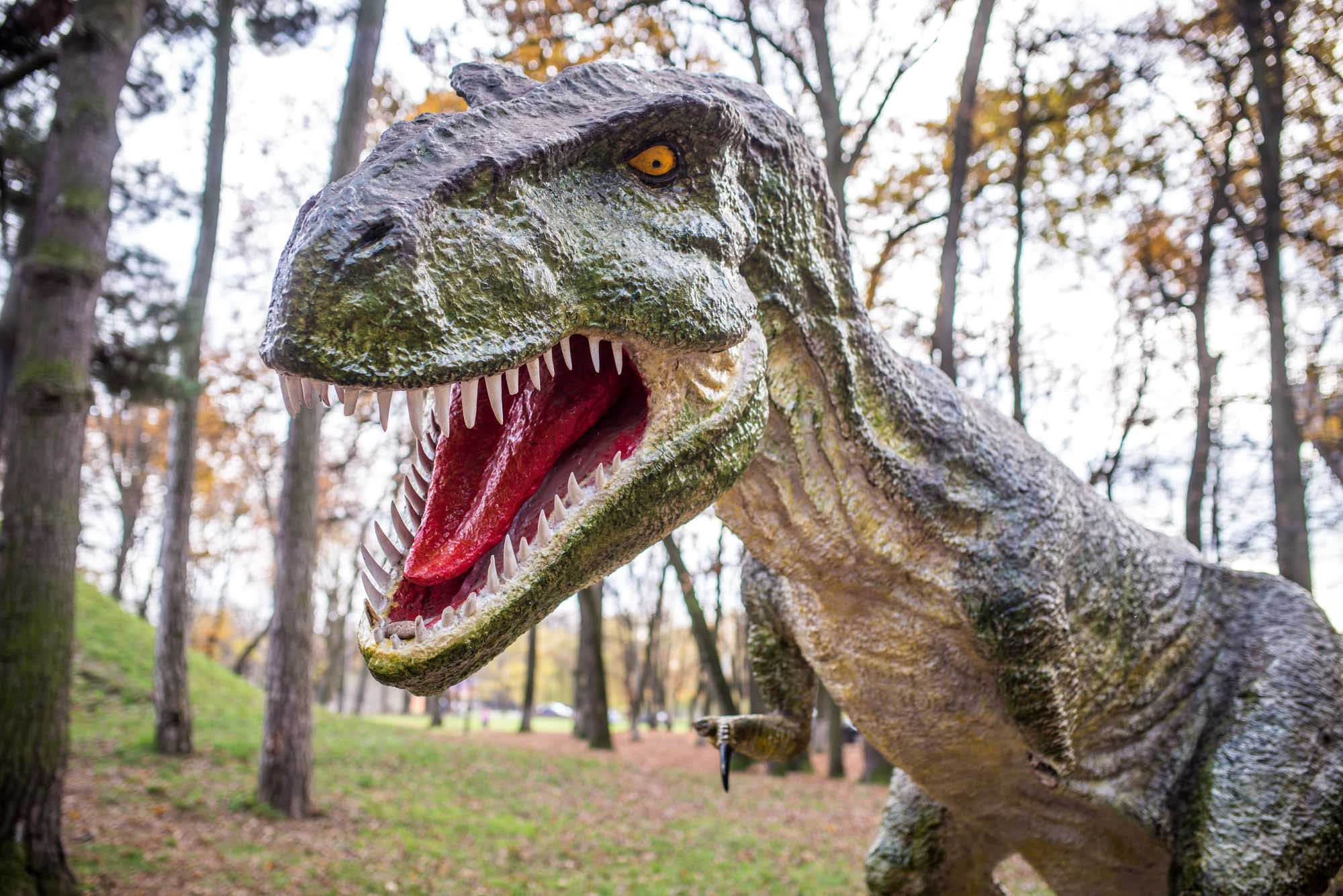 Відірвали 10 зубів, кіготь та лапу: франківському динозавру знову дісталося (ФОТО)