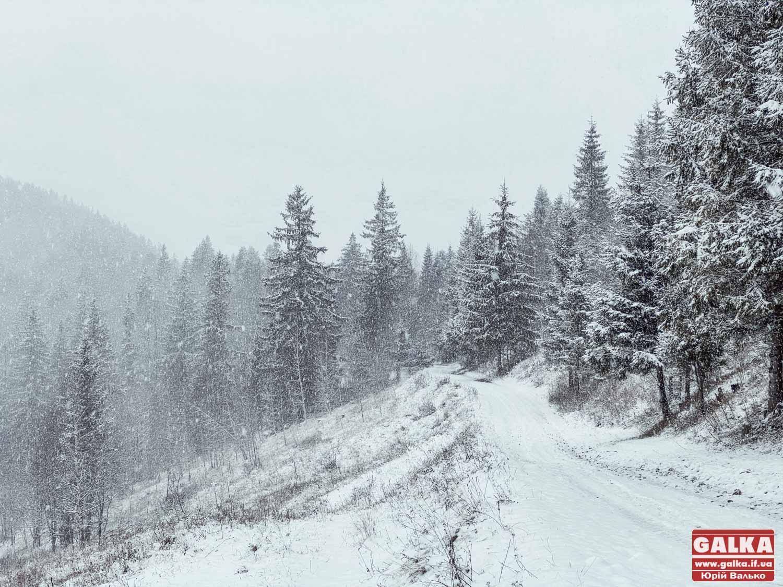 В горах на Прикарпатті заблукали туристи зі Львова