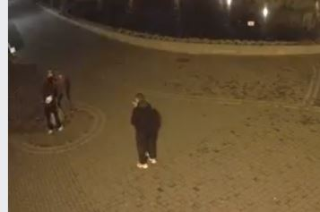 Двоє ламали, двоє дивилися: шукають вандалів, котрі понищили скульптуру у парку Шевченка (ВІДЕО)