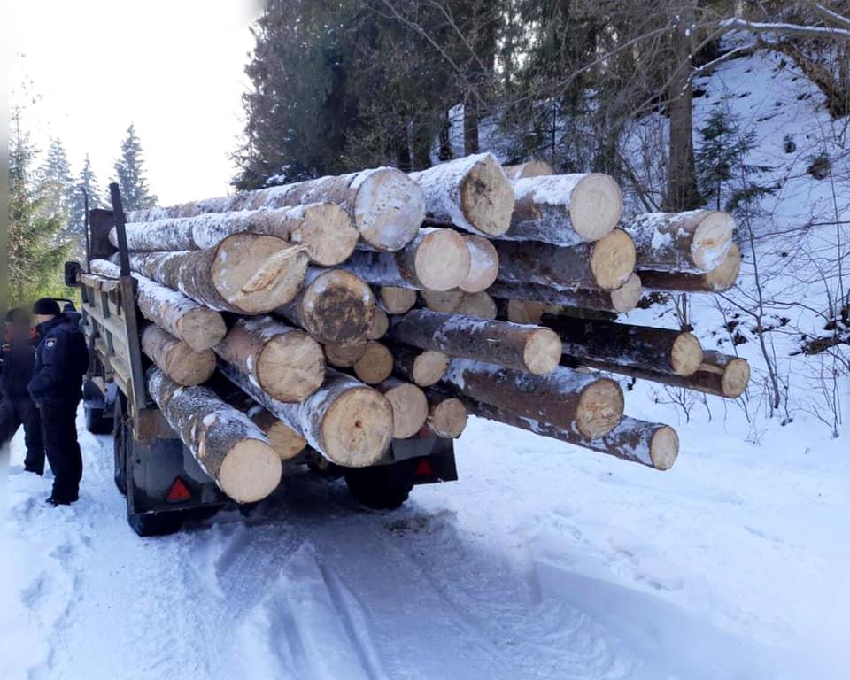 На Прикарпатті у браконьєрів конфіскували деревину та вантажівки (ФОТО)