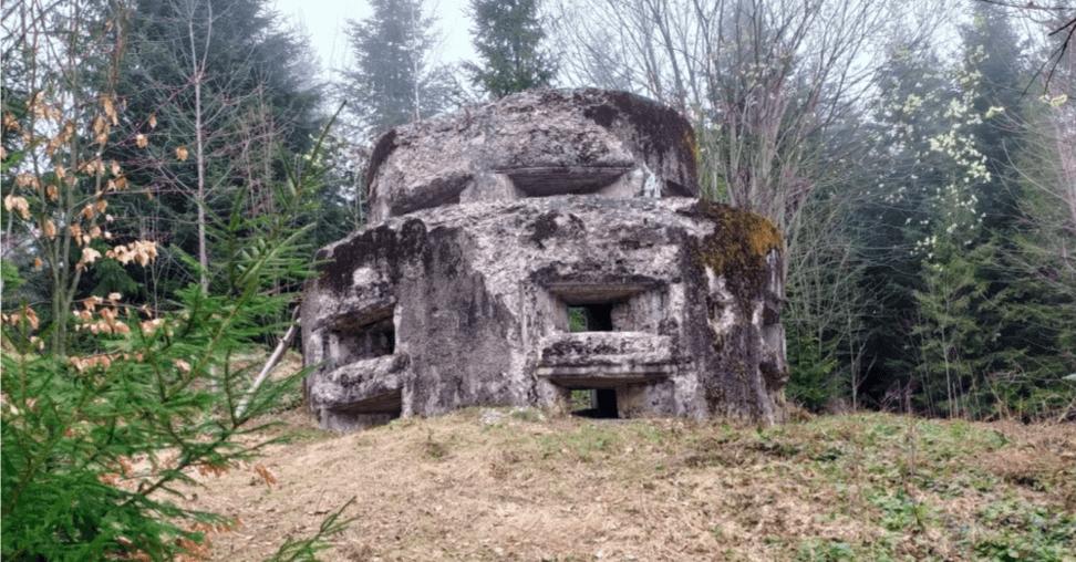 Прикарпатська лінія Маннергейма. На Богородчанщині відновлять унікальний військовий об'єкт (ФОТО)