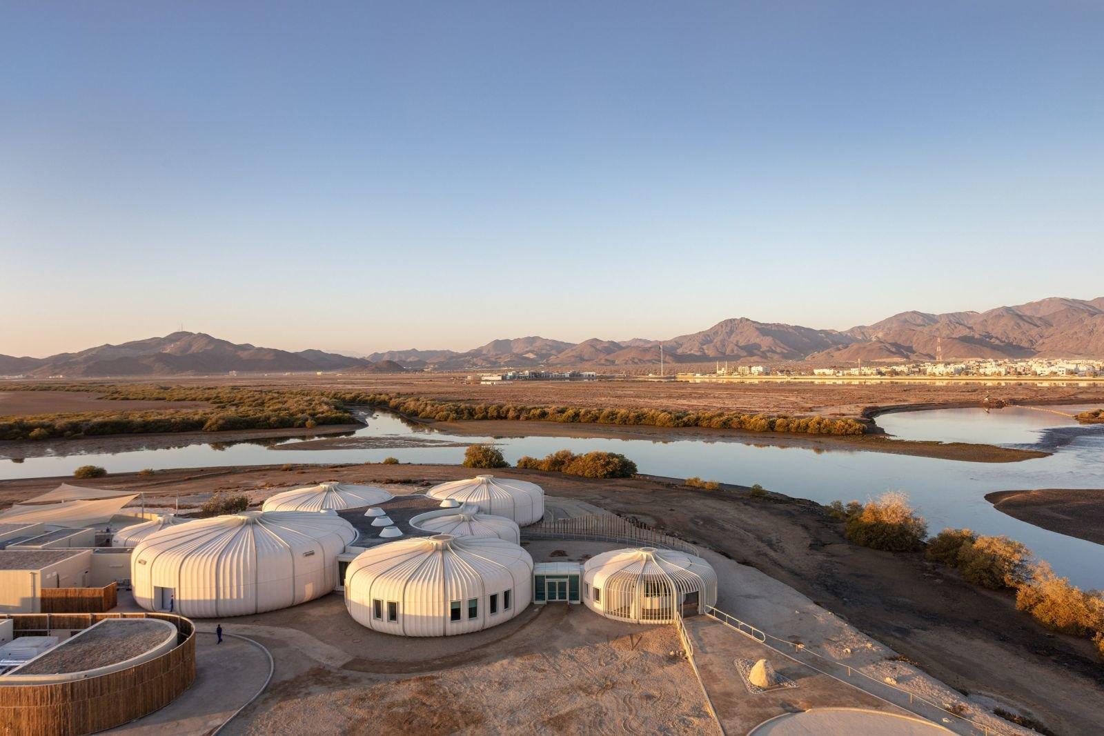 В Еміратах збудували центр реабілітації для черепах