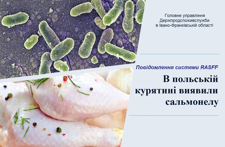 Прикарпатців попереджають про небезпечну польську курятину із сальмонелою