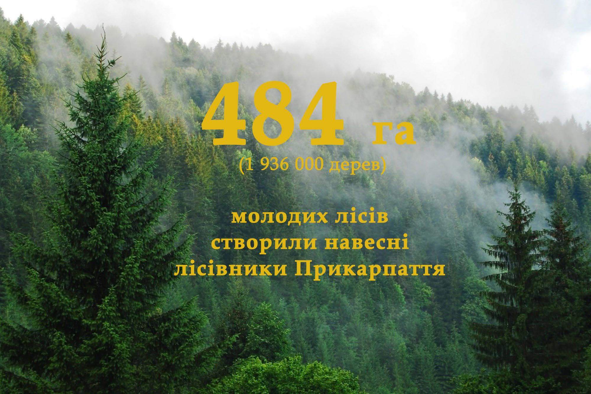 Майже два мільйони дерев посадили навесні лісівники Прикарпаття