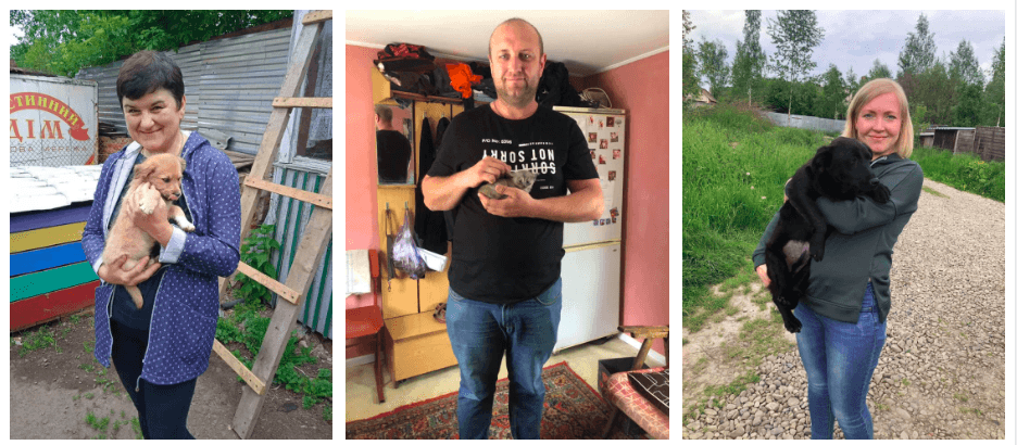 """За травень 23 тварини знайшли нові родини з калуського """"Дому Сірка"""" (МИЛІ ФОТО)"""