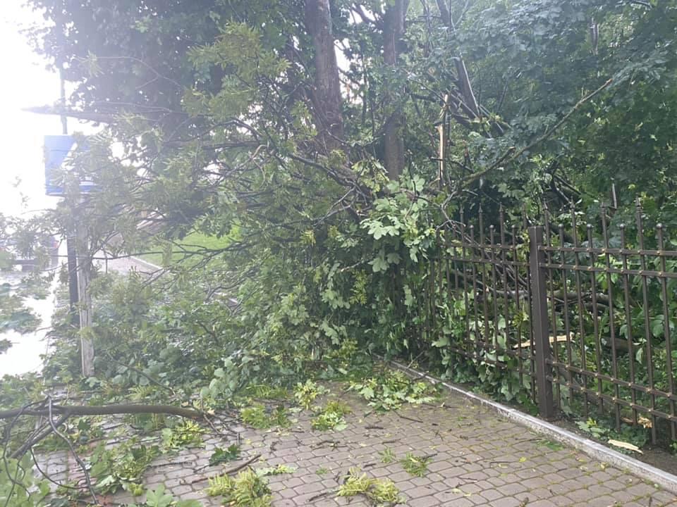 """Повалені дерева та """"літаючі"""" дахи: на Прикарпатті п'ятихвилинний буревій наробив лиха (ФОТО, ВІДЕО)"""