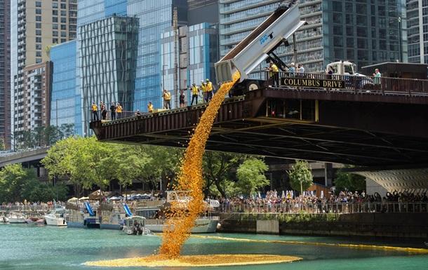 У Чикаго в річку скинули 70 тисяч гумових качок (ФОТО, ВІДЕО)