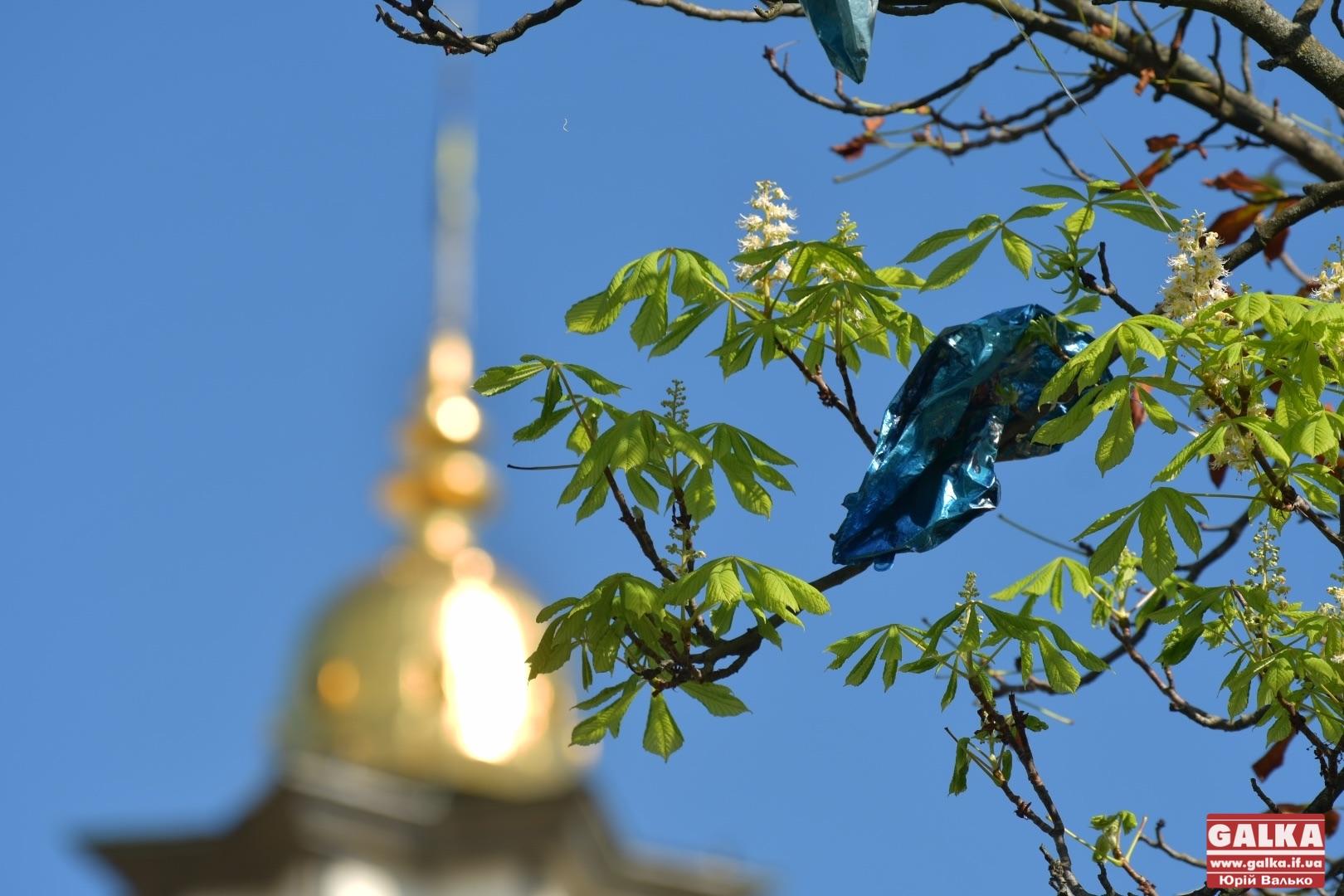 Осінь близько: у центрі Франківська розквітли каштани (ФОТО)