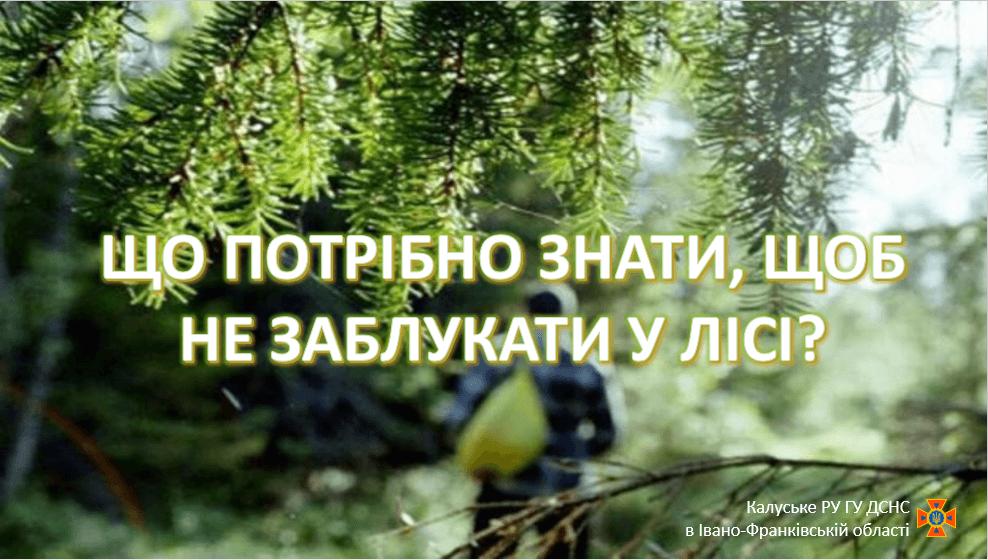 Прикарпатцям радять, як не загубитися в лісі