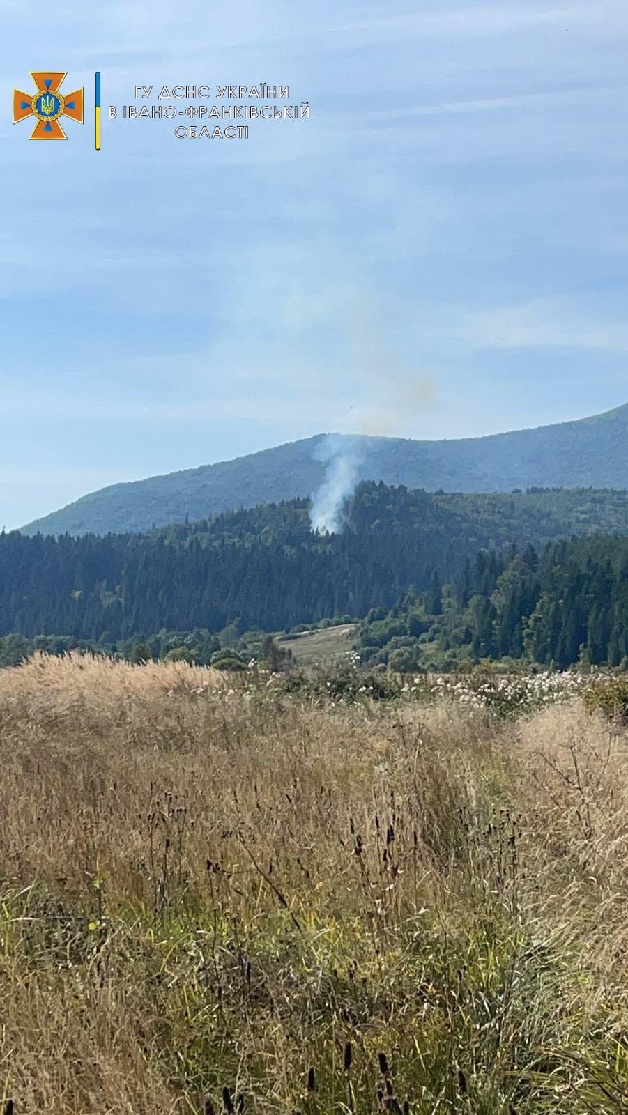 У неділю в Карпатах виникли дві лісові пожежі – їх оперативно погасили рятувальники (ФОТО)