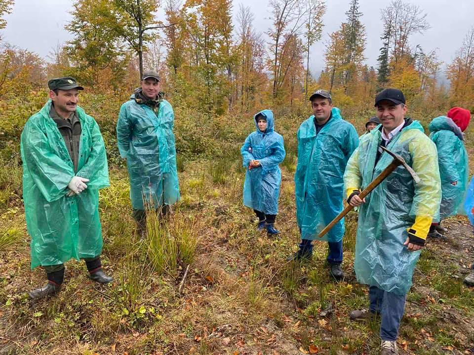 На Верховинщині висадили понад чотири тисячі дерев, які виростило місцеве лісництво (ФОТО)