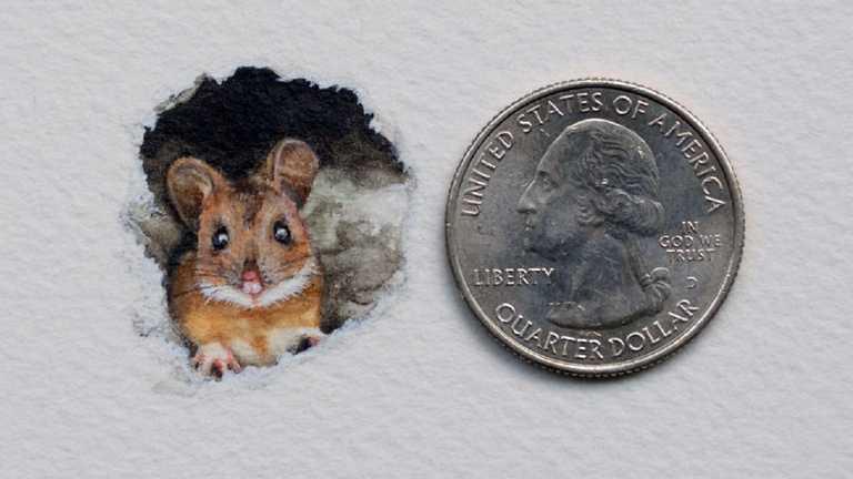 Розміром з монету: художниця створює дуже реалістичні мініатюрні малюнки (ФОТО)
